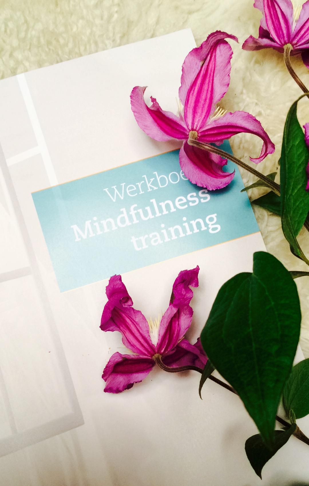 foto-mindfulnessboek