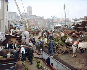 banana-docks-new-york-ca-1890-1910-2