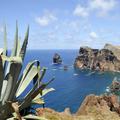 Madeira: subtropisch klimaat in Europa
