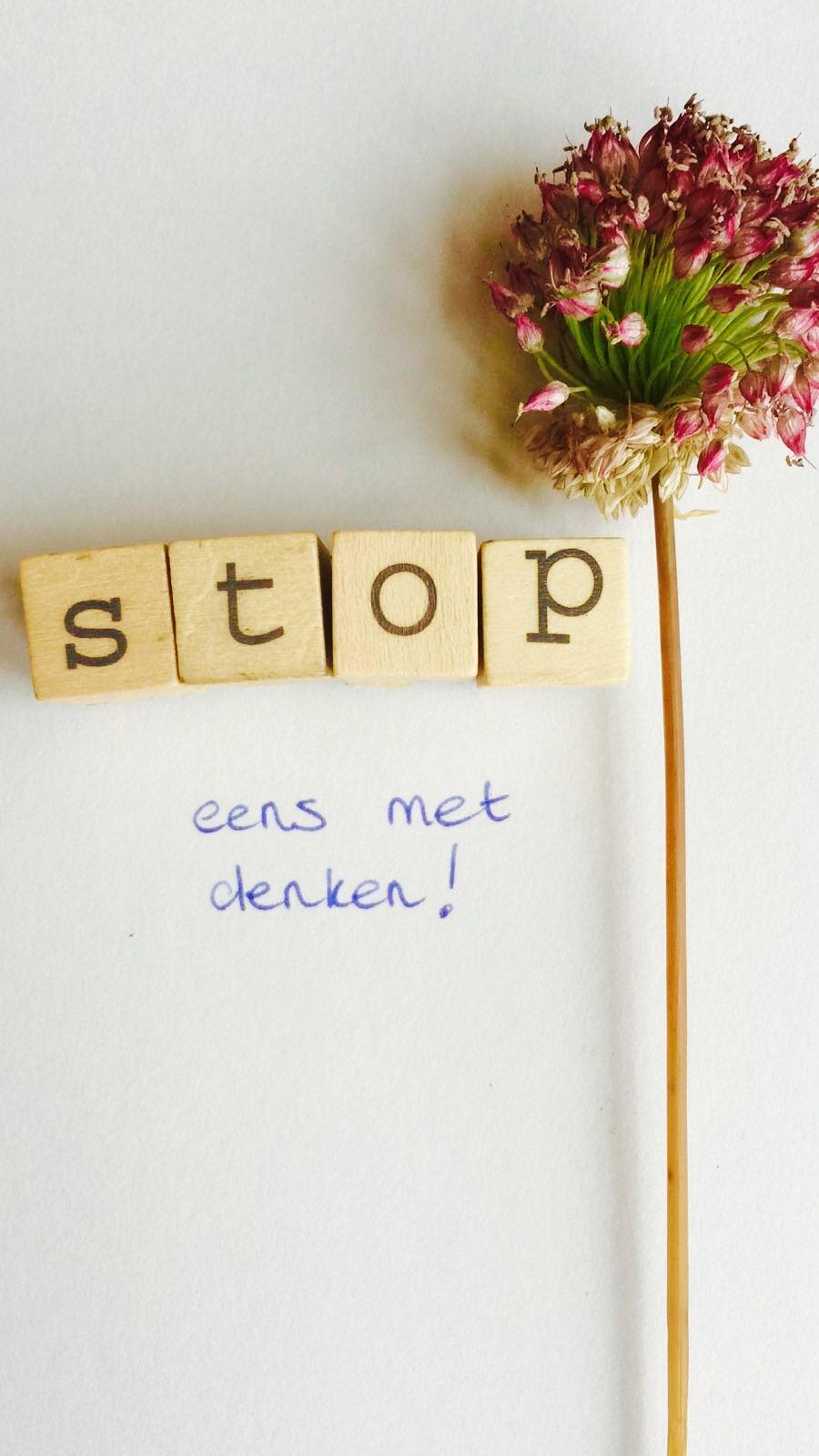 foto-blog-9-nederlands