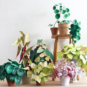 corrie_hogg_paper_plants_multi