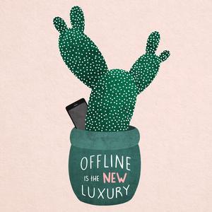 Cactus kopie
