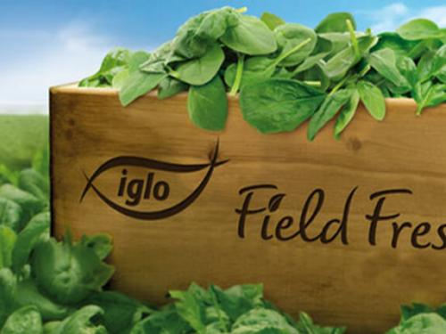 Iglo Field & Sea Fresh campaign