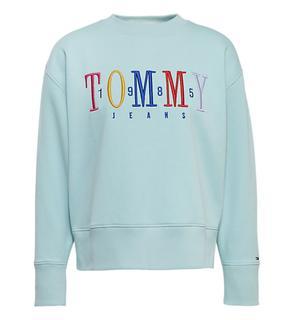 Sweatshirts dw0dw06128 turquoise mintgroen