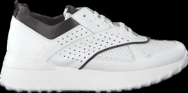 Sneakers Witte Notre Notre v Ag281 5Rj3AL4