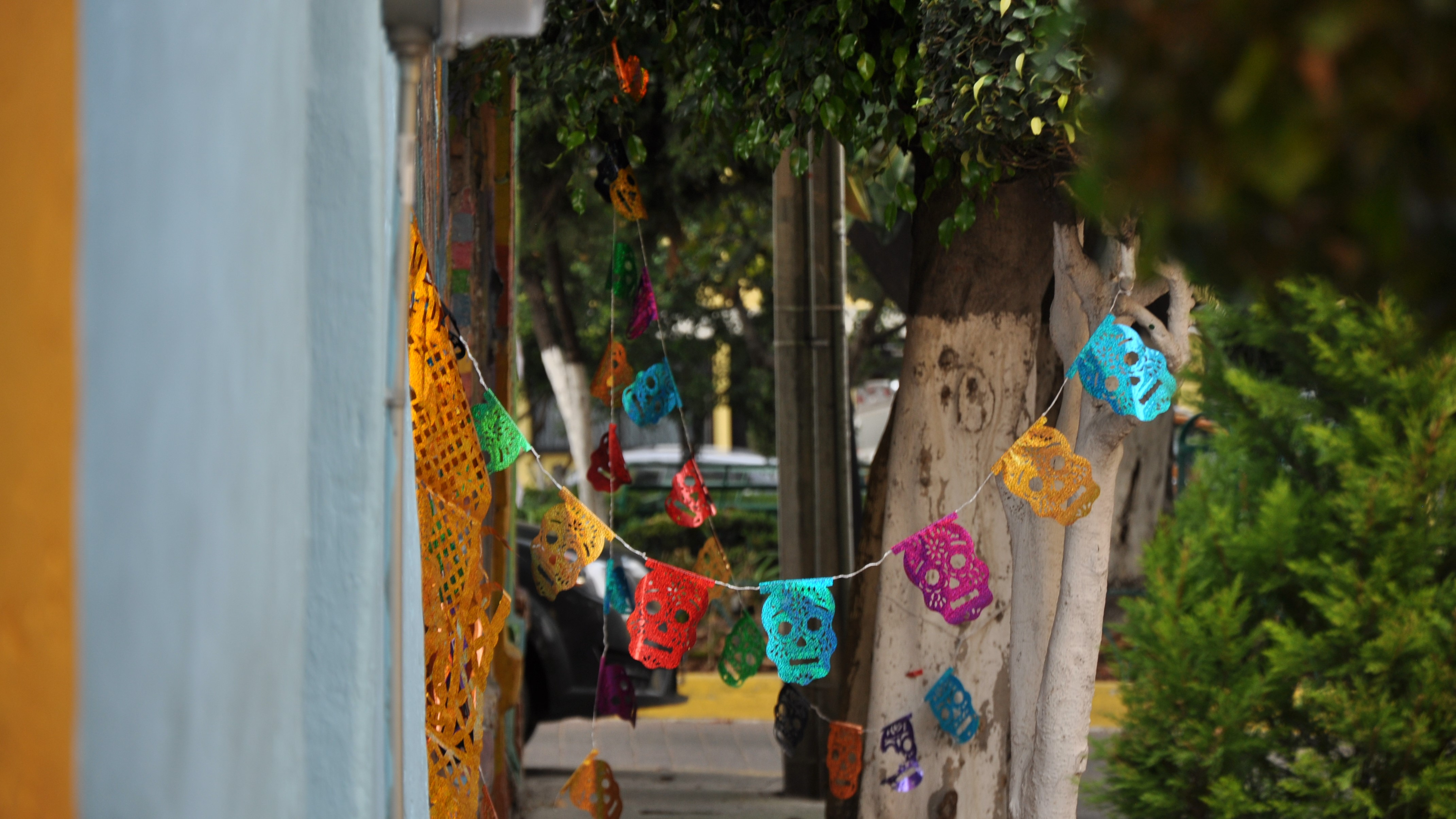 Stilte is een luxe in Mexico-Stad - Flow Magazine NL