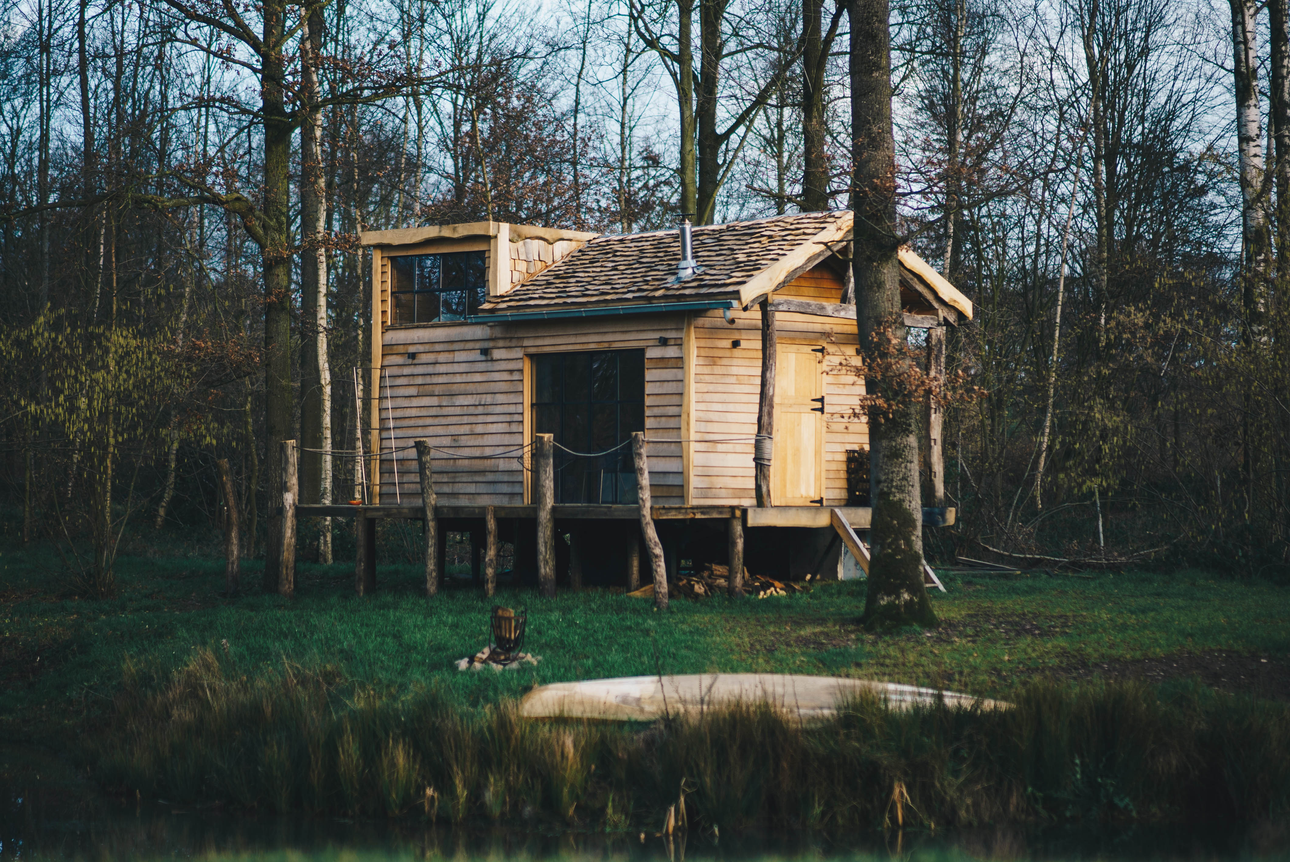 The Forest - tiny house