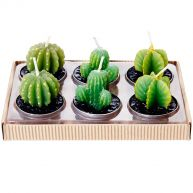Sweet Little Candle Cacti