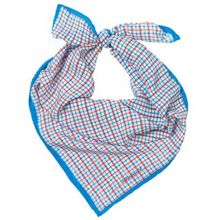Sjaal. Zijde. Ruitjes. Blauw.