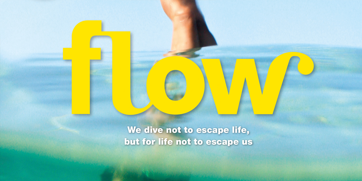 Flow 5