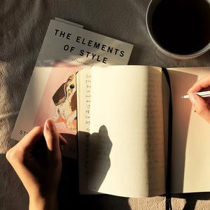 dagboek bijhouden
