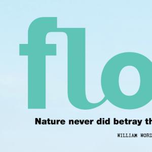 Flow 1
