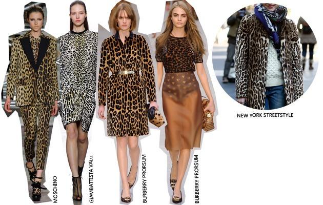 trend leopard