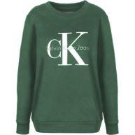 Calvin Klein Jeans True Icon W Sweater sweater groen groen