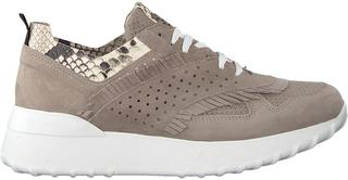 Taupe Sneakers Ag283