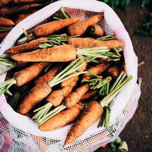 kneusjes-groente