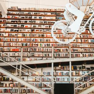 captivating bookstores