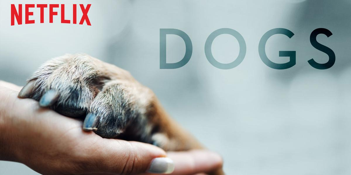 documentaire dogs
