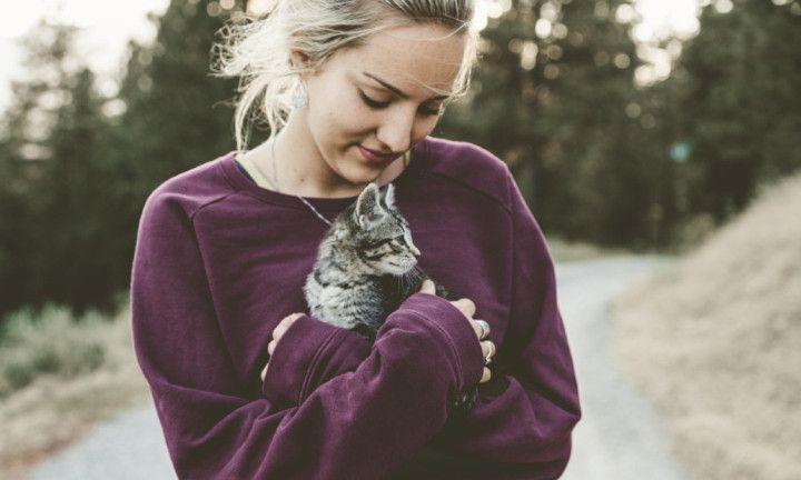 5 redenen waarom katten leuker zijn dan boys