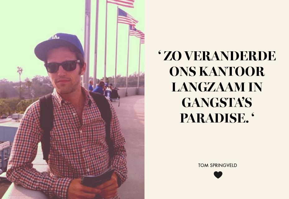 Tom springveld blog