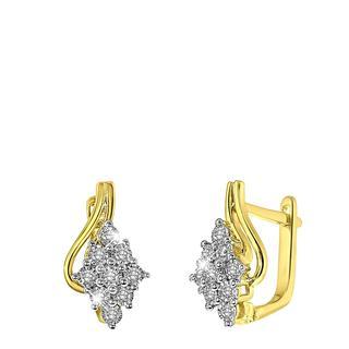 14 Karaat gouden oorbellen entourage met diamant