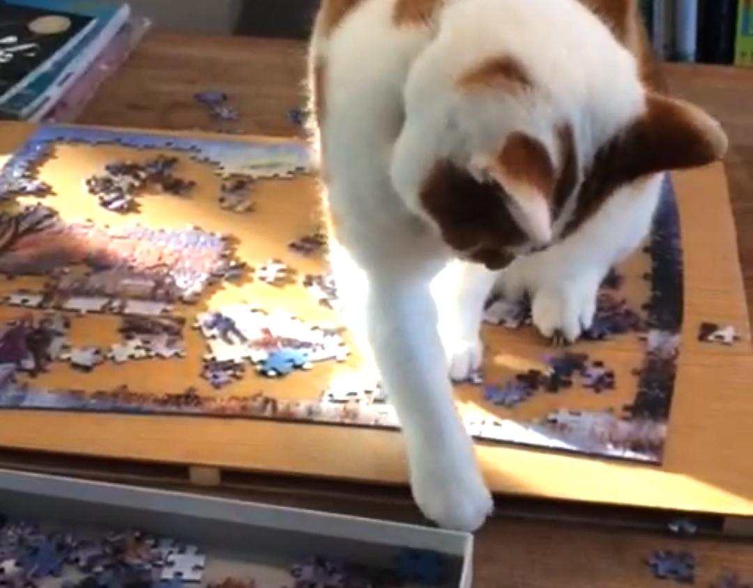 irene kat puzzel flow