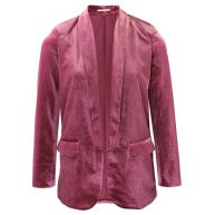 Velvet Blazer - Pink