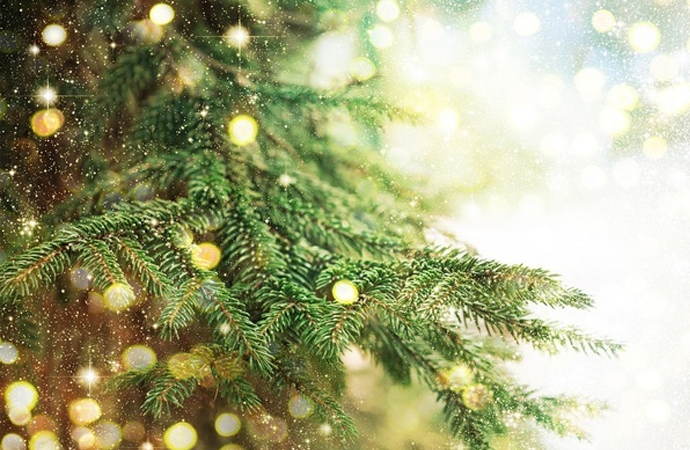 Blijkbaar hangen we kerstverlichting altijd verkeerd in de boom