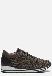 Sneakers luipaard