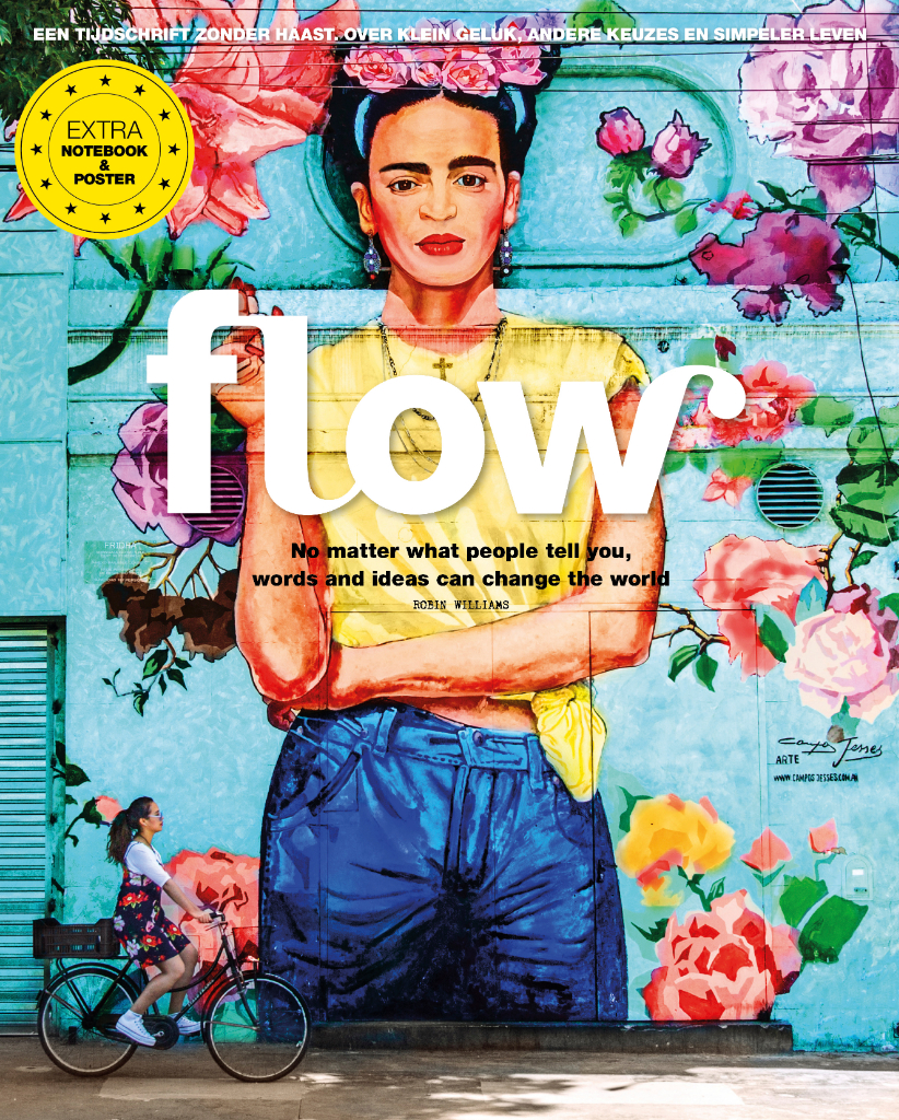 flow 3 cover